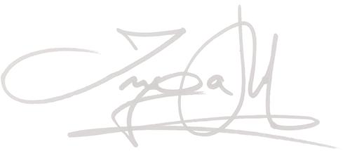 ingami-signatur